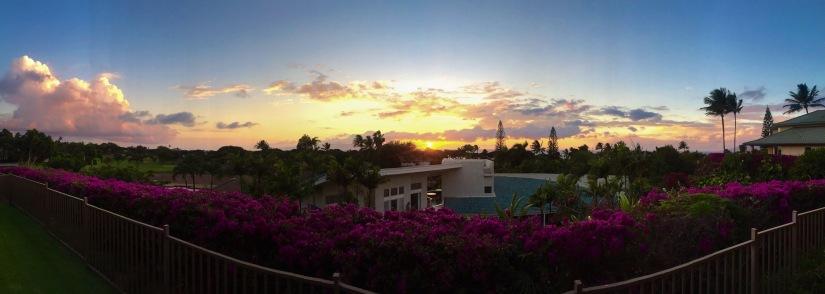 Maui 2014: A PhotoDiary.