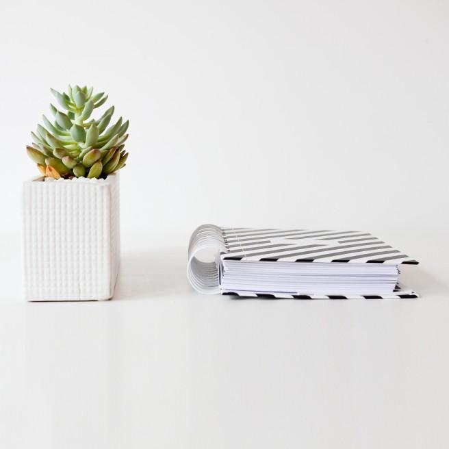 design-love-co-2016-planner-stonecoldbetch-striped